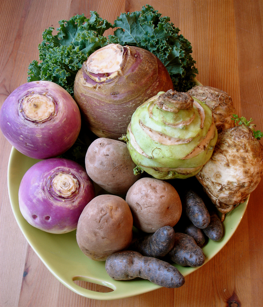 winter vegetable workshop this weekend from seed to fruit